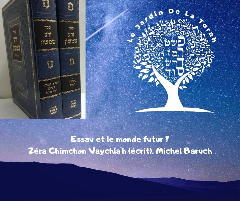 Essav et le monde futur ? Zera Chimchon Paracha Vaychla'h