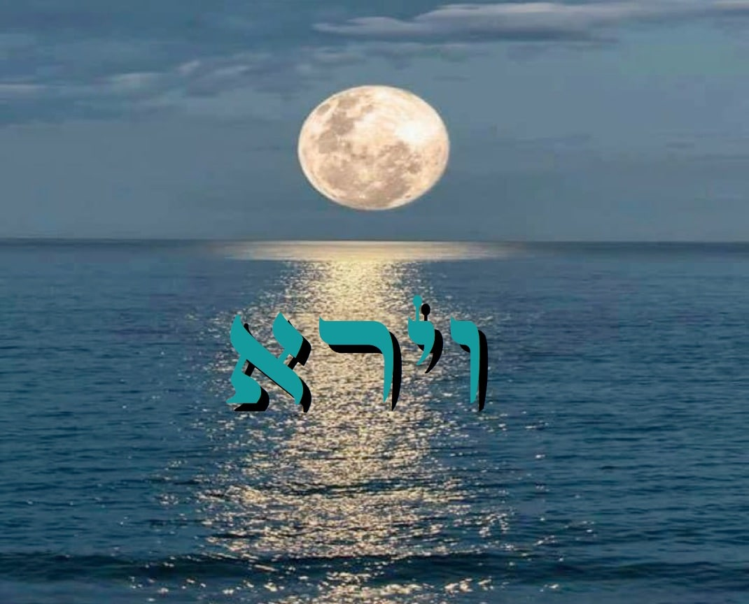 Divré Torah Vayéra - 5778 - Yéhouda Moshé Charbit