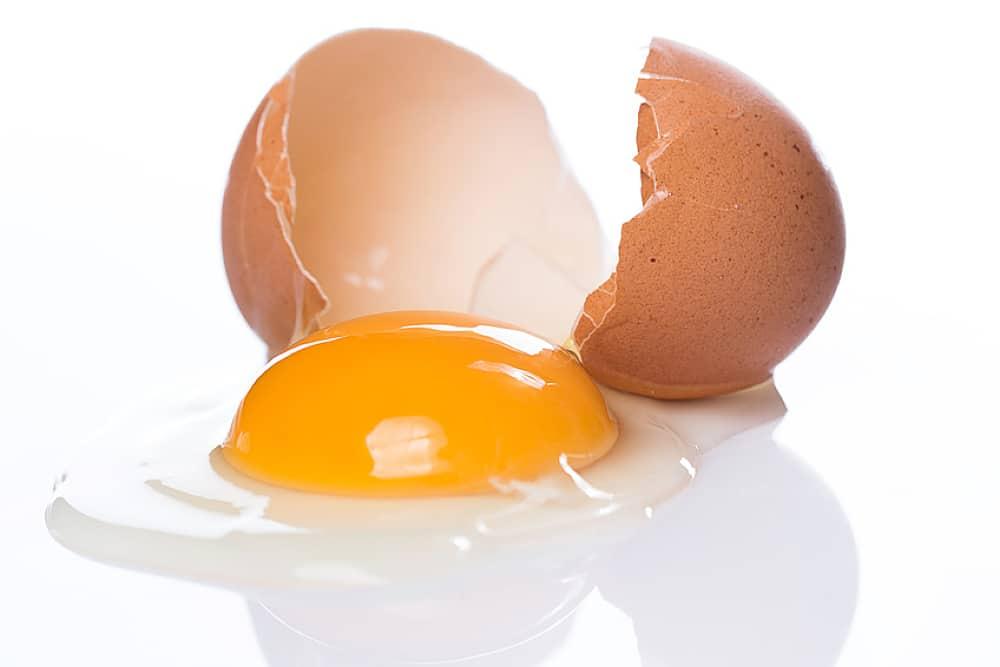 Sang dans les œufs - Principe - Halakha Yomit