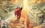 Zohar sur Pessa'h (5) - Le bâton de Moché - Michel Baruch