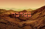 Zéra Chimchon Paracha Bamidbar - La disposition des campements dans le désert - Michel Baruch