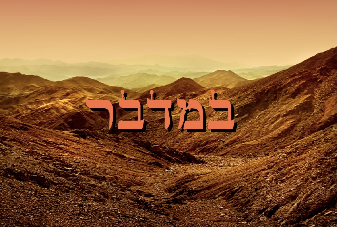 Zéra Chimchon - Parachat Bamidbar.  Darouch 3 (audio). Michel Baruch