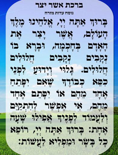 La bénédiction d'Asher Yatsar - Rav David Pitoun