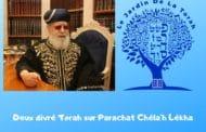 2 divré Torah sur Parachat Chéla'h Lékha - Jardin de la Torah