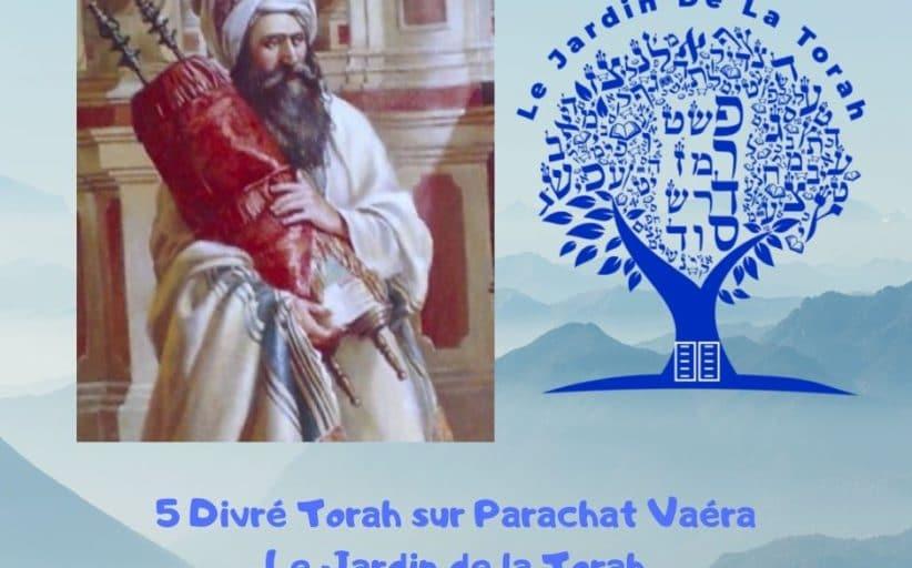 Paracha Vaéra - 5 Divré Torah par Jardindelatorah