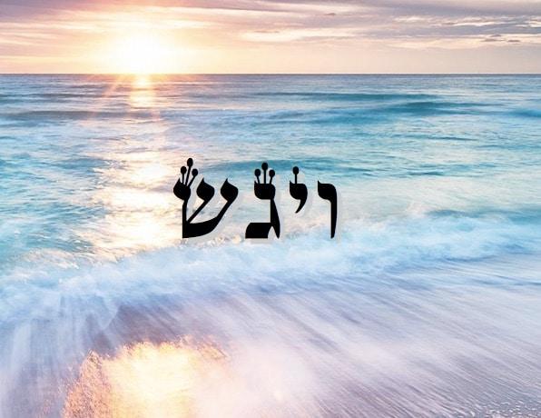 La loi qui s'applique aux frères de Yossef est elle la Torah ou celle des Béné Noa'h ? Zera Chimchone Paracha Vaygach. Par Michel Baruch