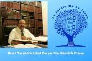 Divré Torah Parachat Bo par Rav David A. Pitoun