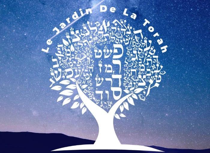 Seule l'étude du Moussar a le pouvoir de faire intérioriser les enseignements et de les faire passer de la théorie à la pratique (Sms Torah)