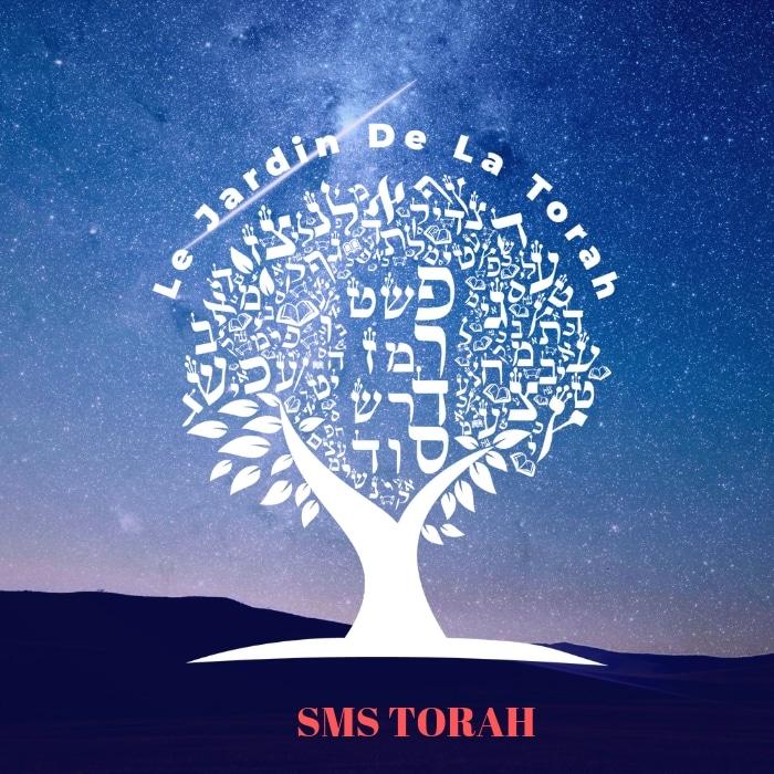 L'indifférence de Pharaon et l'empathie de Moché Rabbénou (Sms Torah)