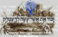L'obligation d'entendre Parachat Zakhor - Rav David Pitoun