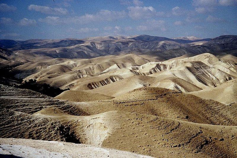 La ségoula des 42 étapes dans le désert - Michel Baruch