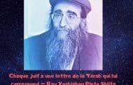 Chaque juif a une lettre de la Torah qui lui correspond - Paracha Massé