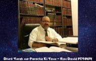 Divré Torah Paracha Ki Tavo - Rav David Pitoun
