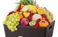 Manger des fruits et repas. Yalkout Yossef Ch. 177. §5. Yéhouda Berros