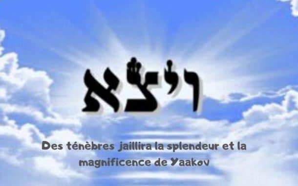 Des ténèbres jaillira la splendeur de Yaakov. Zera Chimchon Vayétsé