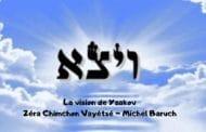 La vision de Yaakov. Zéra Chimchon Paracha Vayétsé. Darouch 5