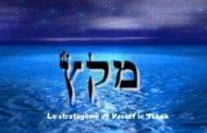 Le stratagème de Yossef le Tsadik - Paracha Mikets - Réouven Carceles