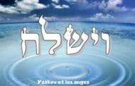 Yaakov et les anges Zéra Chimchon Paracha Vaychla'h