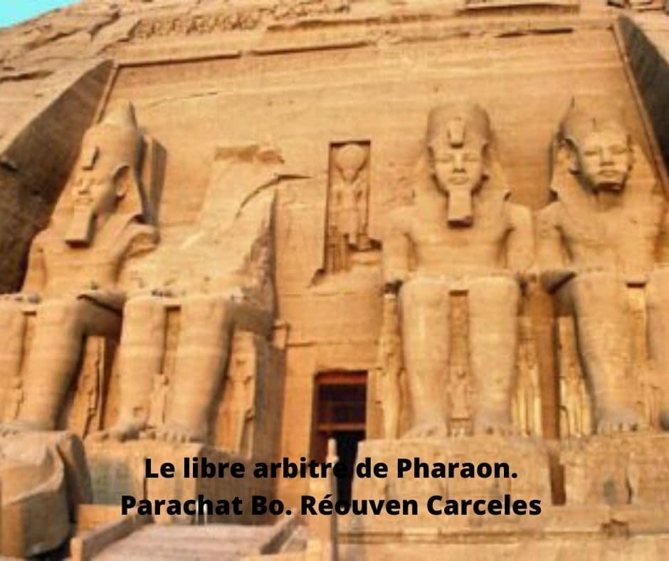 Le libre arbitre de Pharaon. Parachat Bo. Réouven Carceles