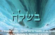 Le monde entier repose sur le Tsadik et sa Torah - Paracha Béchala'h