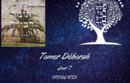 Il réduit nos iniquités .Tomer Déborah- 7. 8ème Attribut. Michel Baruch