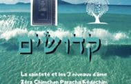 La sainteté et les 3 niveaux d'âme - Zéra Chimchon Paracha Kédochim