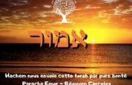 Hachem nous envoie cette torah par pure bonté - Paracha Emor
