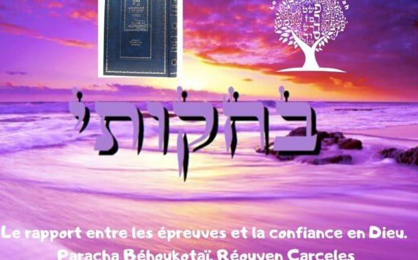 Le rapport entre les épreuves et la confiance en Dieu. Paracha Béhoukotaï