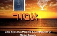 Zéra Chimchon Paracha Emor (Darouch 3) - Michel Baruch