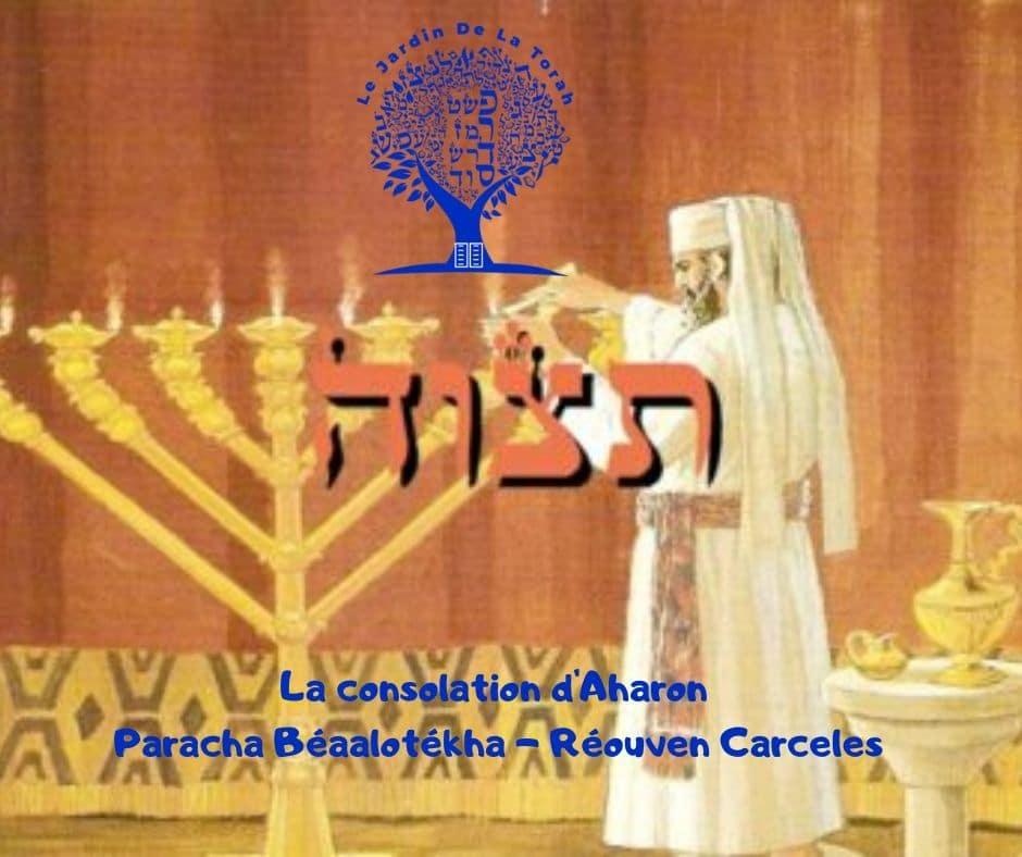 La consolation d'Aharon - Paracha Béaalotékha - Réouven Carceles