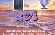 Zéra Chimchon Parachat Nasso - Les familles de la tribu de Lévy