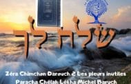 Zéra Chimchon Les pleurs inutiles Paracha Chéla'h Lékha Michel Baruch