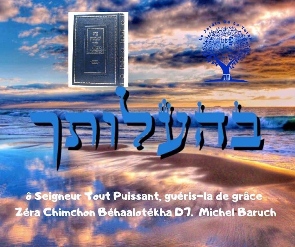 ô Seigneur Tout Puissant, guéris-la de grâce Zéra Chimchon Béhaalotékha