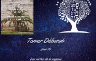 Les vertus de la Sagesse -Tomer Déborah (Jour 16) - 16. Michel Baruch
